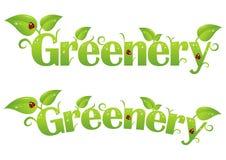 grönska Arkivbilder