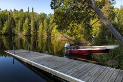 Grönskande skog sjö Royaltyfri Fotografi
