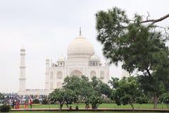 Grönskasikten av Taj Mahal royaltyfri bild