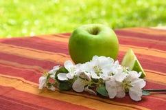 Grönt äpple med en filial av ett blomstra Apple-träd, i en gard Royaltyfri Foto