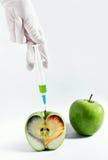 Grönt äpple med hjärta som kureras av injektionen Royaltyfri Bild