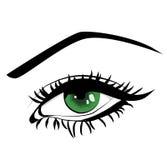 Grönt öga för härlig kvinnlig Arkivfoton