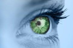 Grönt öga på blåttframsida Arkivfoton