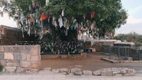 Grönt önskaträd med färgrika band och fnuren Önskaträd nära den forntida gravvalvet i Cypern paphos Religionönskaträd stock video