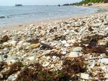 grönt anmärkningsföroreningvatten Royaltyfri Bild