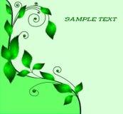 grönt ark för bakgrund Arkivbild
