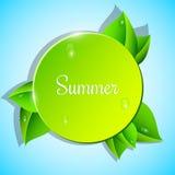 Grönt baner på en blå bakgrund Härliga nya sidor med dagg Vit chamomile Bevattna tappar realistisk ballonsillustration E vektor illustrationer