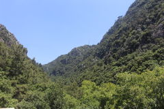 Grönt berg Royaltyfria Foton
