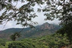 Grönt berg royaltyfri fotografi