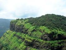 grönt berg för skog royaltyfria bilder
