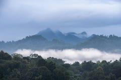 Grönt berg i tropiskt klimat på dimmigt arkivfoto