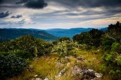 Grönt berglandskap med mörka moln fotografering för bildbyråer