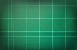 Grönt bitande mattt. Arkivbild