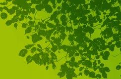 Grönt blad stock illustrationer