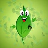 Grönt blad för ekologi Arkivfoto