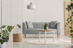 Grönt blad i den vita vasen på den runda träkaffetabellen i stilfull vardagsrum med den gråa scandinavian soffan royaltyfria bilder