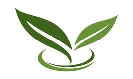 Grönt blad Logo Design Template stock illustrationer