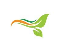 Grönt blad Logo Template Design Vector, emblem, designbegrepp, idérikt symbol, symbol Arkivbilder