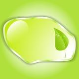 Grönt blad med utrymme för text vektor EPS10 Royaltyfria Bilder