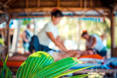 Grönt blad på suddig process av massagen Dag i strandbrunnsort royaltyfria foton