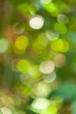 Grönt bokehabstrakt begrepp Royaltyfri Foto