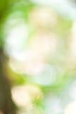 Grönt bokehabstrakt begrepp Royaltyfria Foton