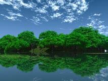 grönt damm Fotografering för Bildbyråer