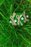 Grönt easter ägg i gräset Arkivbild