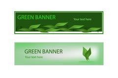 Grönt ekologiskt baner med gröna leaves Arkivbild