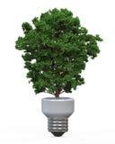 Grönt energiEco begrepp Arkivbild