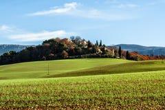 Grönt fält i Provence, Frankrike Royaltyfria Foton