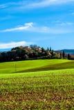 Grönt fält i Provence, Frankrike Arkivfoto