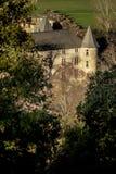 Grönt fält i Provence, Frankrike Royaltyfria Bilder