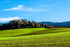 Grönt fält i Provence, Frankrike Arkivbild