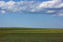 Grönt fält i solig dag med blå himmel och pösiga moln Royaltyfria Foton