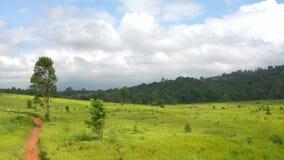 Grönt fält med bana och himmelbakgrund arkivfilmer