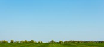 Grönt fält med träd i avstånd Arkivbilder