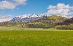 Grönt fält- och berglandskap royaltyfri fotografi