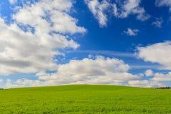 Grönt fält och blå himmel i Aberdeenshire, Skottland Arkivbilder