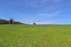 Grönt fält och blå himmel i bygden med gamla väderkvarnar bakom Royaltyfri Fotografi