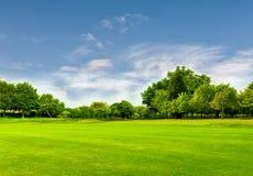 Grönt fält och blå himmel i vår Utmärkt som en bakgrund Royaltyfri Fotografi
