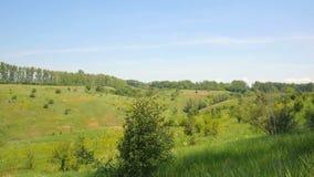 Grönt fält och molnig himmel, härligt naturlandskap stock video
