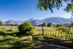 Grönt fält som omges av berg Fotografering för Bildbyråer