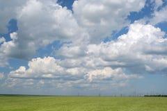 Grönt fält under den blåa molniga skyen Arkivfoto