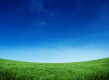 Grönt fält under den blåa skyen Royaltyfri Fotografi