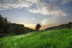 Grönt fält under en blå himmel med moln Fotografering för Bildbyråer
