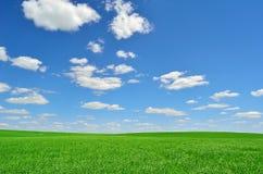 Grönt fält under en himmel med moln Arkivbild