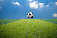 Grönt fotbollfotbollfält Arkivfoton