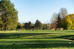 Grönt golffält och blå himmel arkivbild