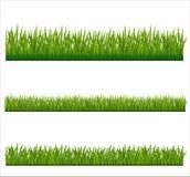 Grönt gräs Arkivbild